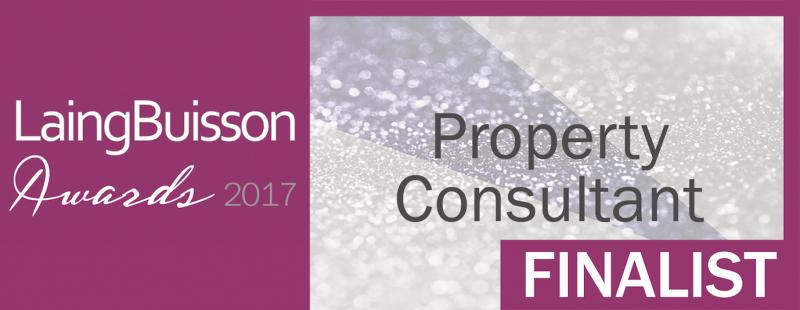 LaingBuisson's 'Property Consultant of the year' finalist