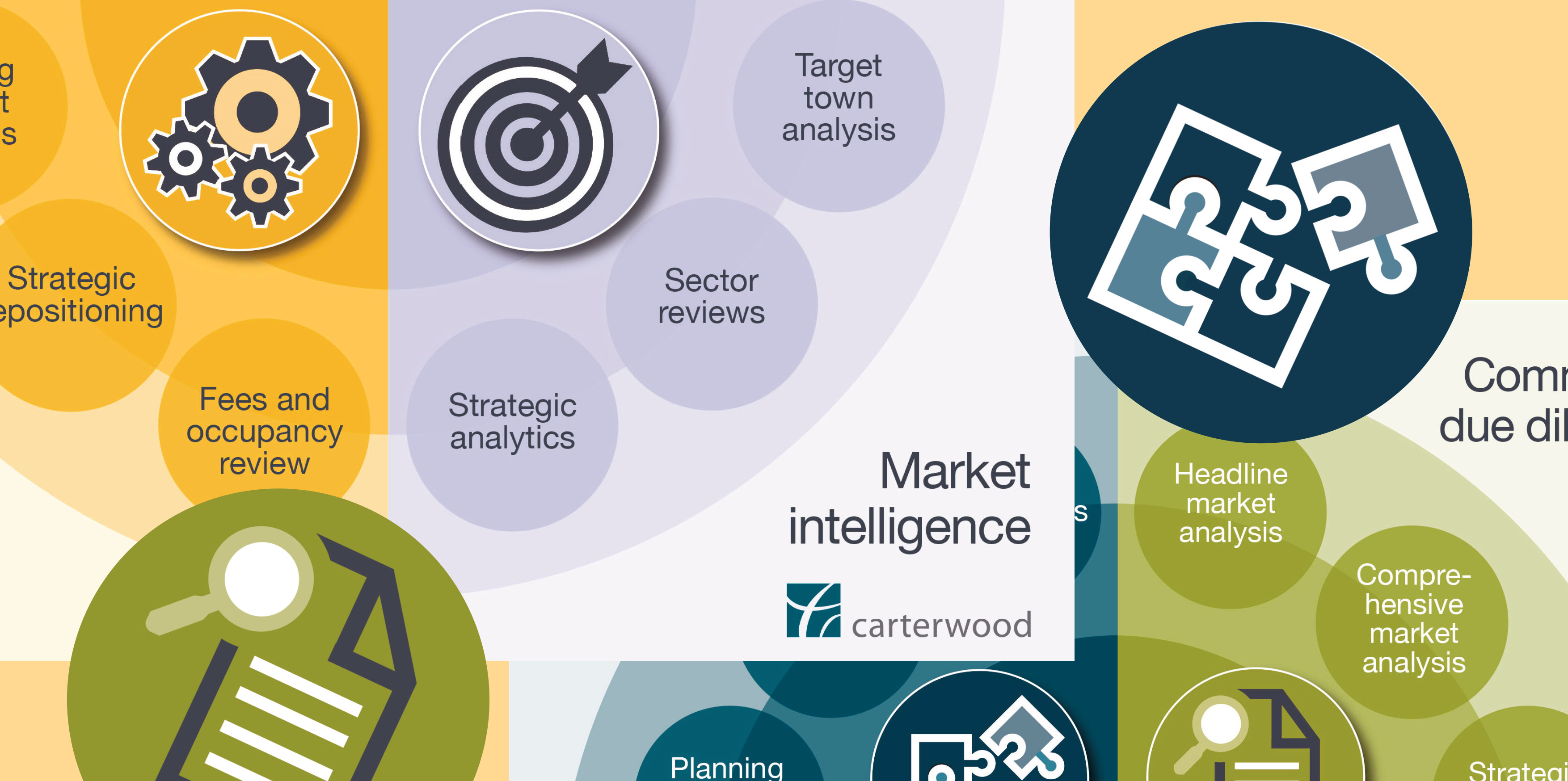 12 market reports to transform your care business