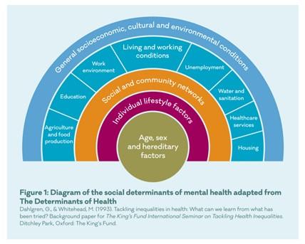 Diagram of the social determinants of mental health adapted from The Determinants of Health